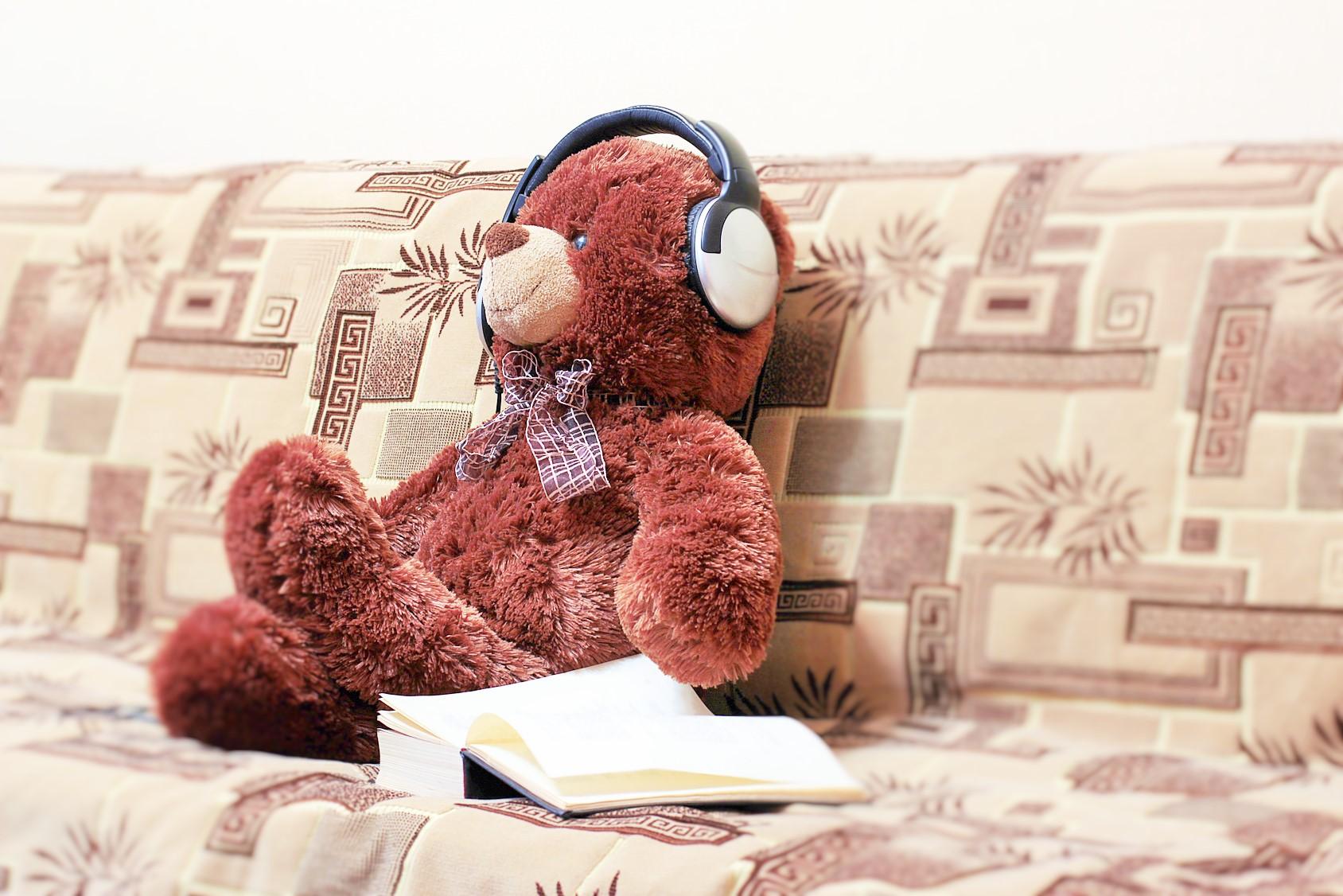Bear, headphones, book