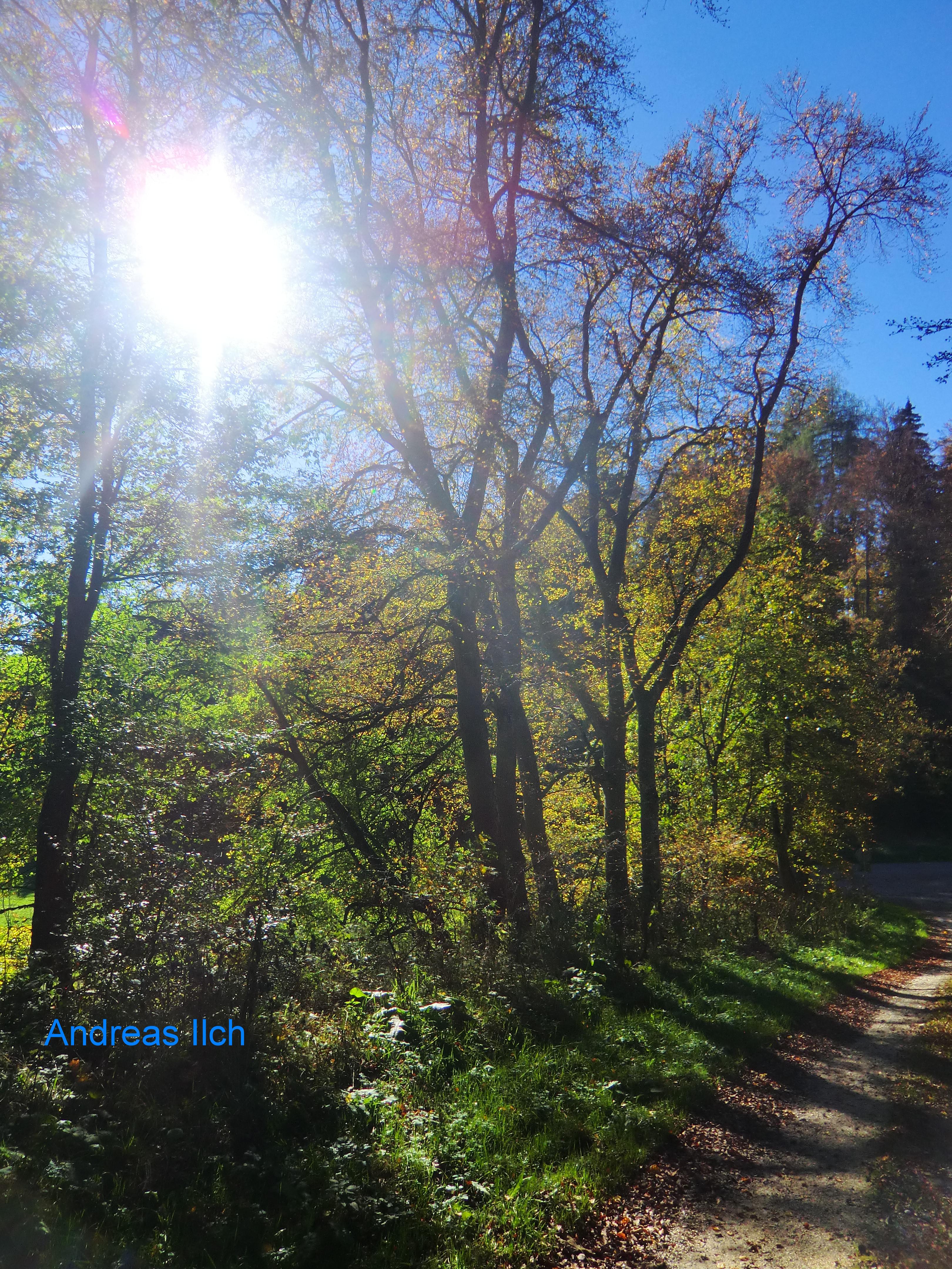 2014 10 Albstadt 207a