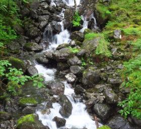 An einem der Aufstiege zum Cadair Idris in Snowdonia rauscht ein Wasserfall ins Tal