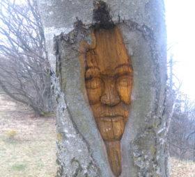 Ein in einen Baumstamm geschnitztes Gesicht