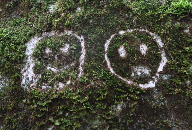 Ins Moos an einer Steinwand geritzte Smileys