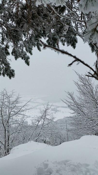 Winterlandschaft Traufgang