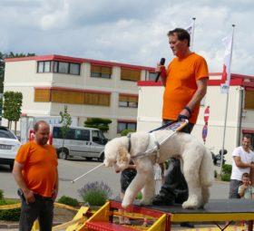 Kurt und sein Blindenführhund