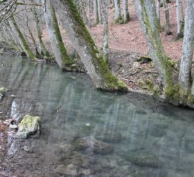 Zwischen den Schichten – der Filsursprung bei Wiesensteig