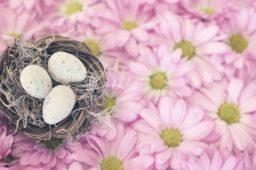 Ostereier… äh – Mitarbeitersuche fürs Zollernalb Klinikum mit Gewinnspiel