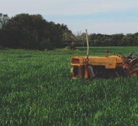 SWR Heimat – Jule und die Kalkwerkfarm