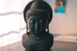Yoga Session mit Beatrix Reiterer – Teil 5