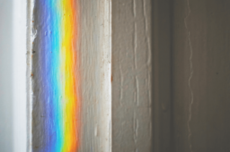 7 Fragen an einen Transgender