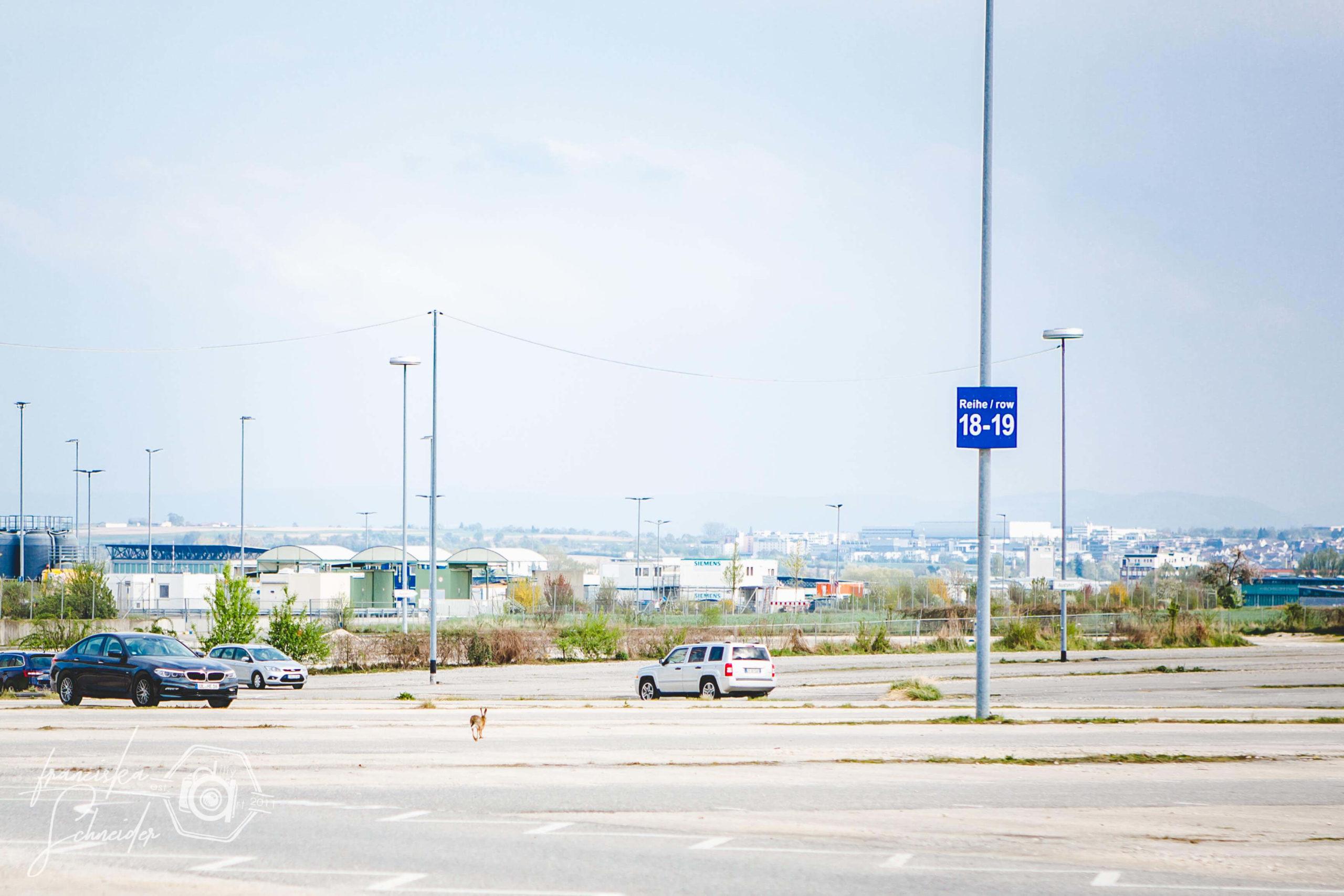 Lost Places am Stuttgarter Flughafen