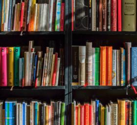 Sieben Bücher, die Janine inspirieren