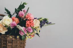 Bunte Blumen, eine Scheune und viel Flair