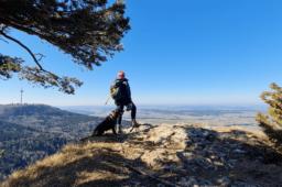 Gespaltener Fels und Hoher Fels – Mit einem genialen Weitblick