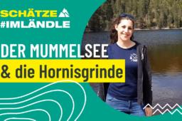 Am höchsten Gipfel: Die Idylle am Mummelsee und der Hornisgrinde
