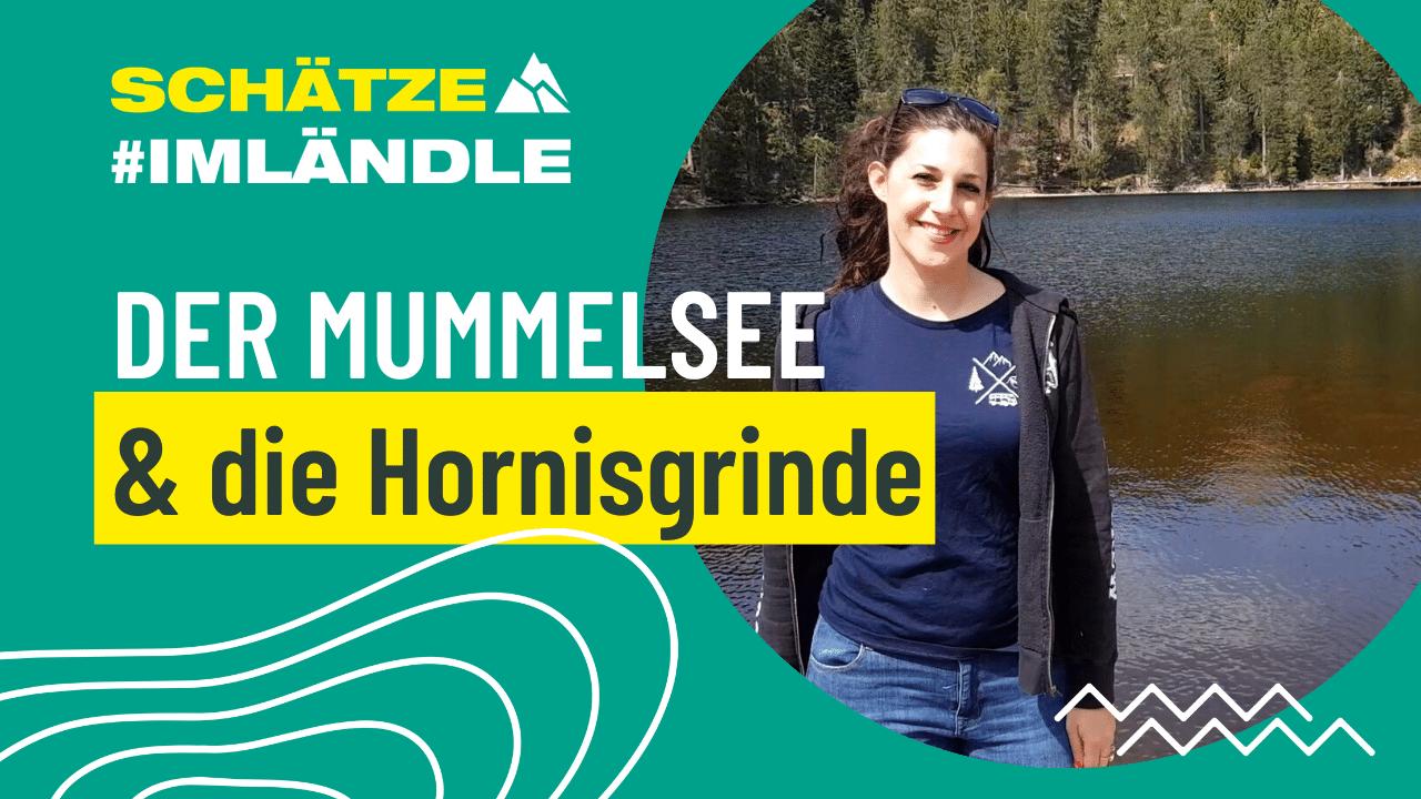 Vorarbeit Schaetze-im-Laendle_Ausflugsziele_YouTube-1280x720px (2)