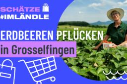 Erdbeeren selbst pflücken in Grosselfingen