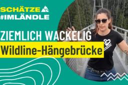 Ziemlich wackelig – Die Wildline-Hängebrücke